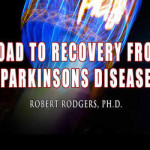 Road to Recovery ad for blog talk 300x250